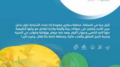 Photo of عروض موسم الرياض : أهم العروض رياض سفاري
