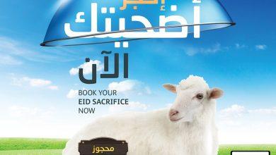 Photo of عروض الجزيرة السعودية لهذا الأسبوع الخميس 23 يوليو 2020 – عروض العيد